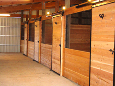 12x12 Stalls at Circle T Training